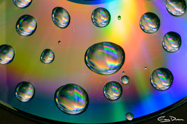 Water Droplets on DVD