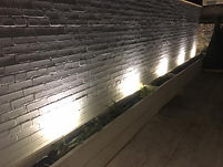 Garden Lights for flower beds, Edinburgh Electrician