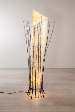 LAMPE SHELLFISH