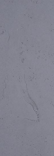 RBBS-3 / Grau mit Blaustich