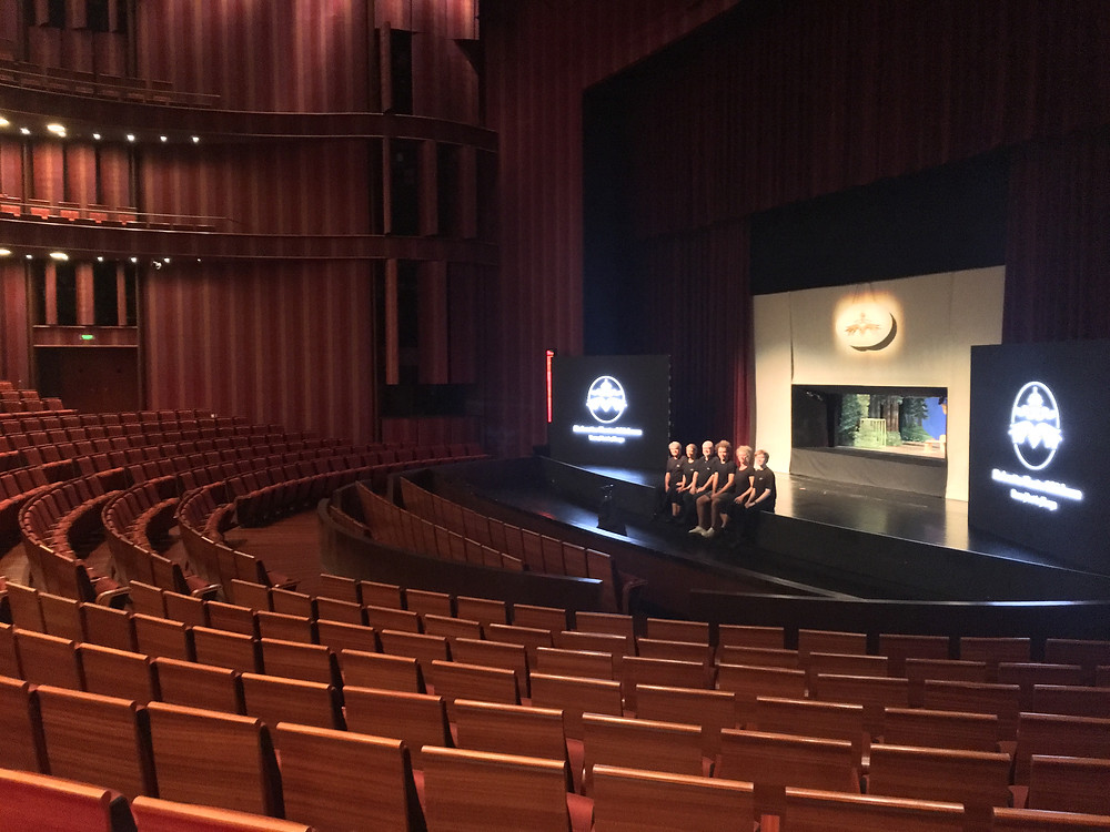 Our Team on stage of the National Center for Performing Arts in Peking