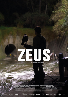 Poster for Movie Zeus
