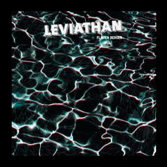 Levianthan - Flavien Berger
