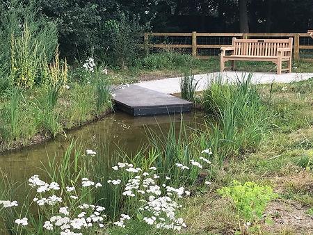 pond with bench andyarrow.jpeg