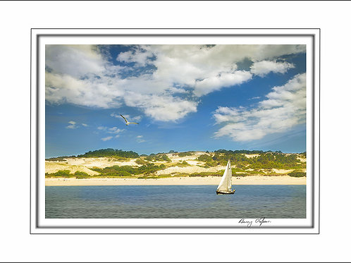 00727 Cape Cod Dunes