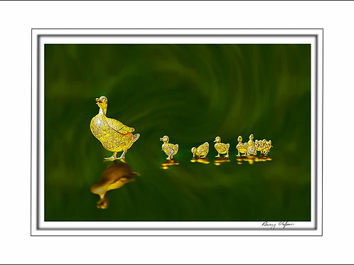 00621 Make Way for Ducklings Boston