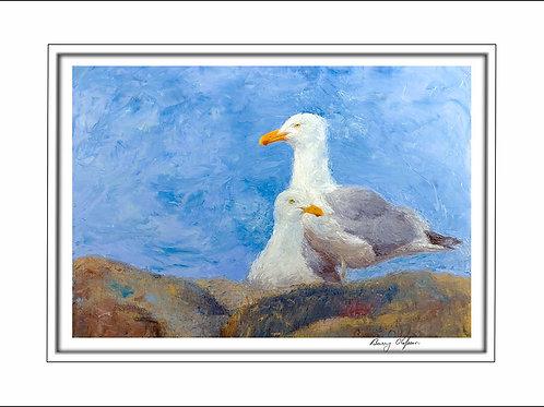 FA00108 Sesuit Seagulls