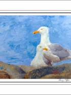 FA00108-Sesuit-Seagulls-5-X-7.jpg