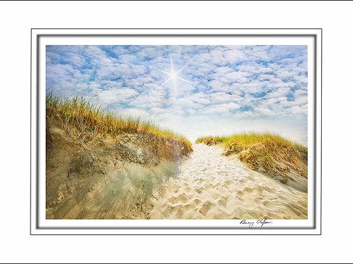 00676 Sunshine Dunes Cape Cod