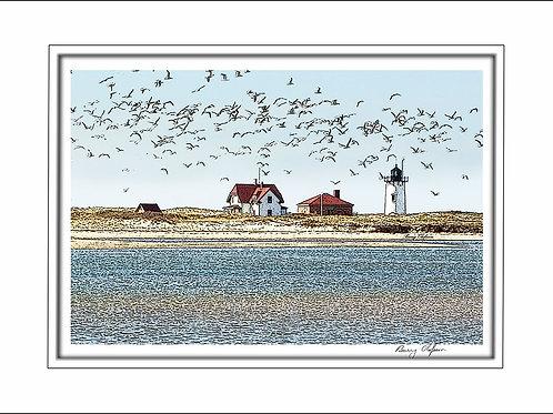 00165 Race Point Lighthouse Provincetown Cape Cod