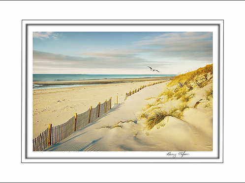 00500 Mayflower Beach Cape Cod