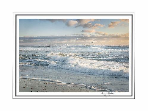 00517 Marconi Beach Cape Cod