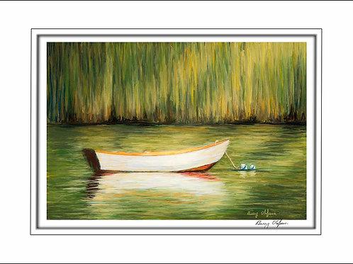 FA00143 Dory in Marsh
