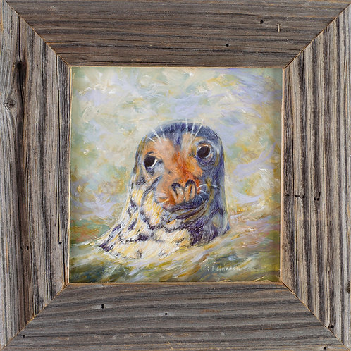 FA00354 Monomoy Joe - Oil in 6 X 6 Barnwood Frame
