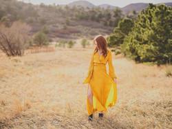 Gold dress 4