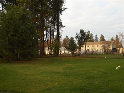1803 Spokane St.-Back Yard