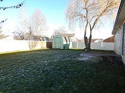 585 Bunker Back yard