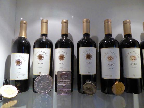 Alta Vista Winery Near Chacras de Coria