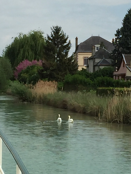 Floating Along the Marne Canal in Champagne