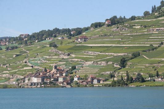 UNESCO Lavaux Vineyards on Lake Geneva