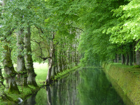 Canal in the Loire