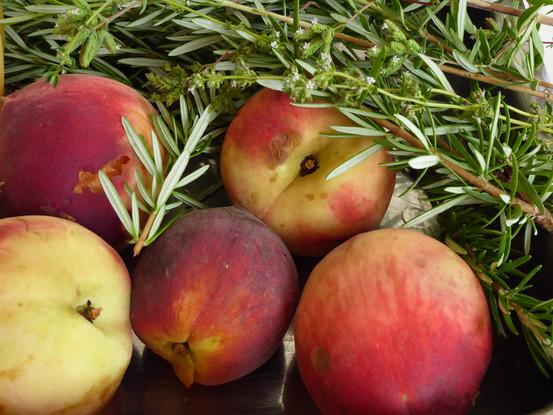 Rosemary and peaches in Mendoza