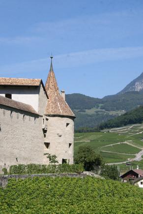 Chateau de Aigle