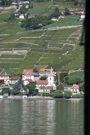 UNESCO Lavaux Wine Region on Lake Geneva