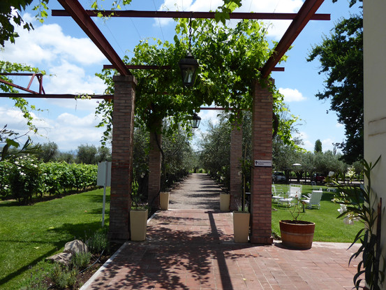 Alta Vista Winery