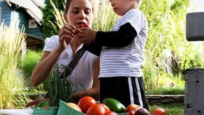 การวางผังปกป้องพื้นที่เกษตรกรรมและการสร้างพื้นที่อาหารตามเกณฑ์กฎบัตรด้านอาหาร แวนคูเวอร์