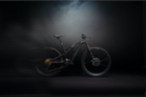 2020 Specialized Turbo Levo SL Picture.j