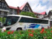直行バス.jpg