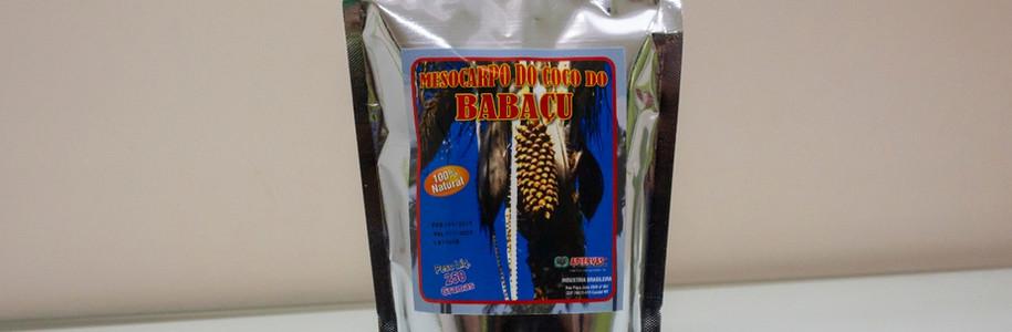 Mesocarpo do Coco do Babaçu