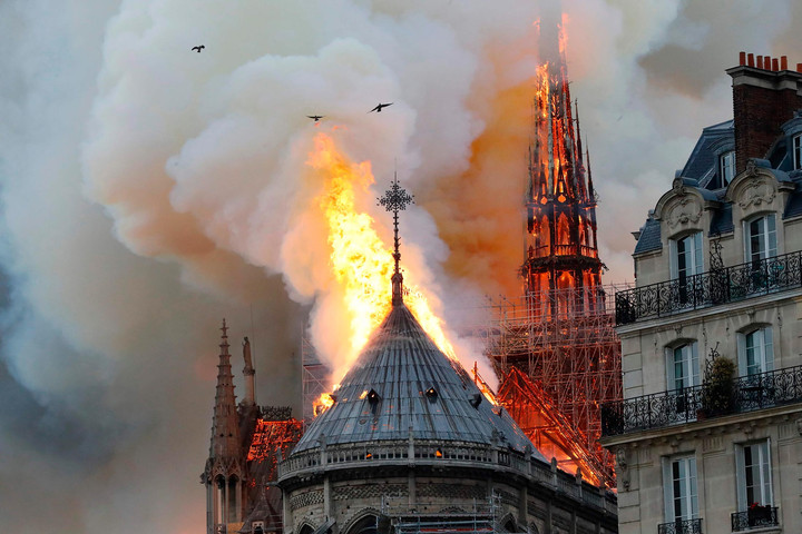 A phoenix will rise from the ashes of Notre Dame