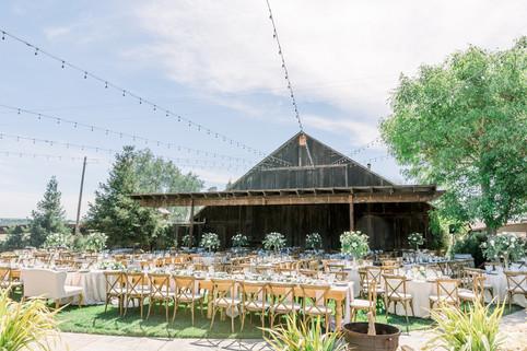 Pepper Tree Ranch Wedding   San Luis Obispo Wedding Photographer