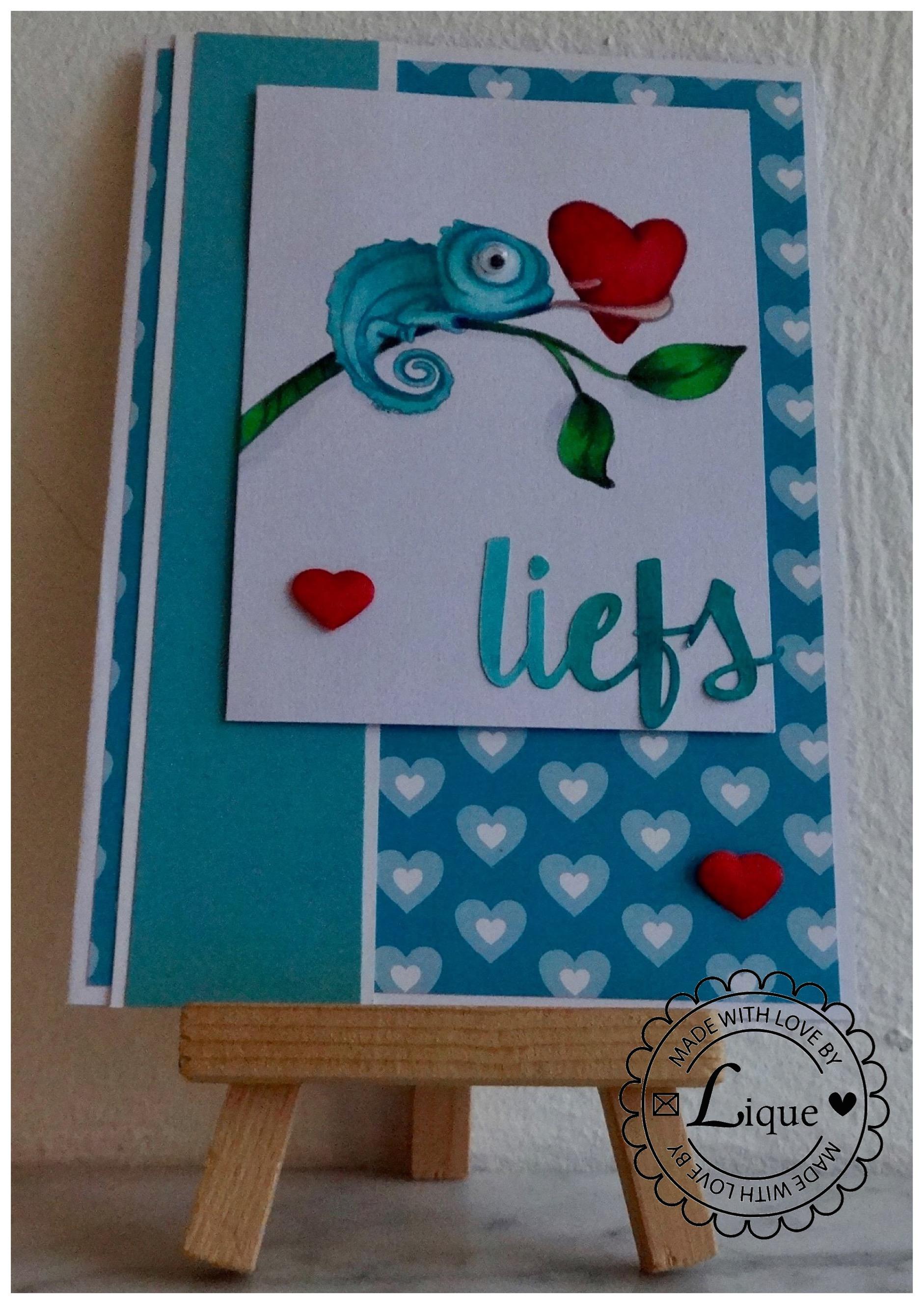 Liefs (with love) gecko