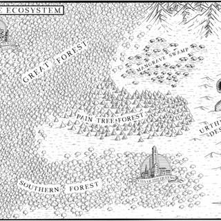 The Ecosystem