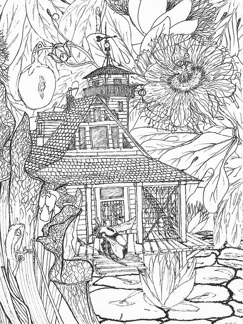 Somerville Rowe: Virginia Beach Swamp House