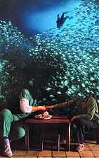 AquariumSalesman.jpg