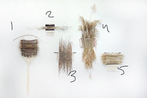 Paula Runyon: Wildness Study 3