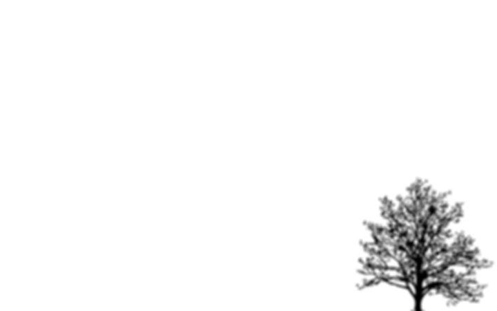 5681866-white-wallpaper.jpg