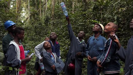 Visite plantations Yangambi janvier 2020