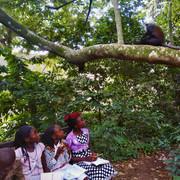 Dessine-moi une forêt !, Lubunga, août 19