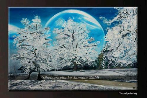 **Snowy Silence....**