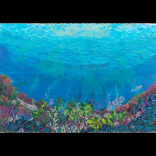 Sea life havens