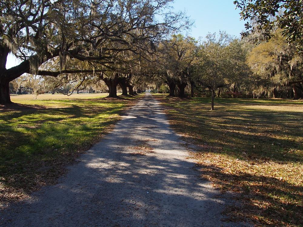 Forrest Gump's Driveway.