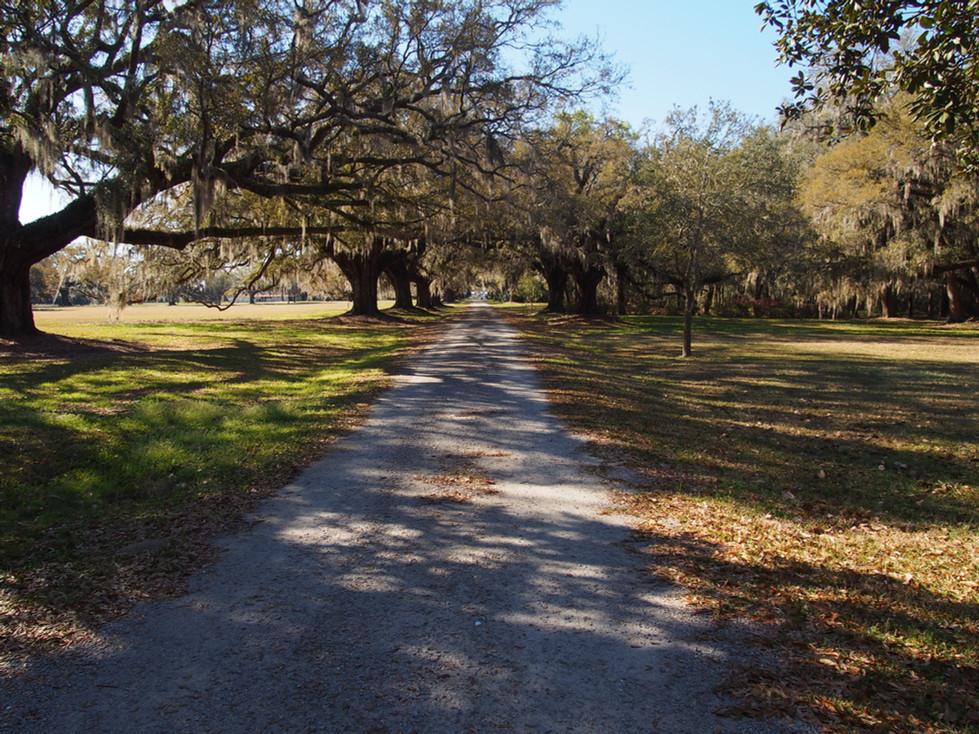 Hilton Head, Savannah and Forrest, Forrest Gump