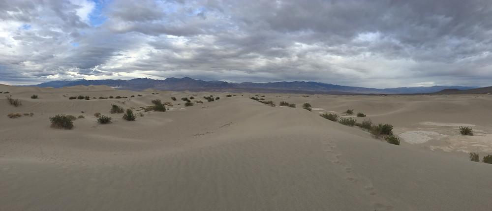 Mesquite Sand Dunes Panorama