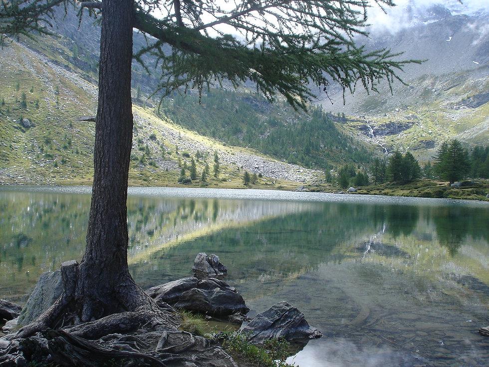 Lago Arpy