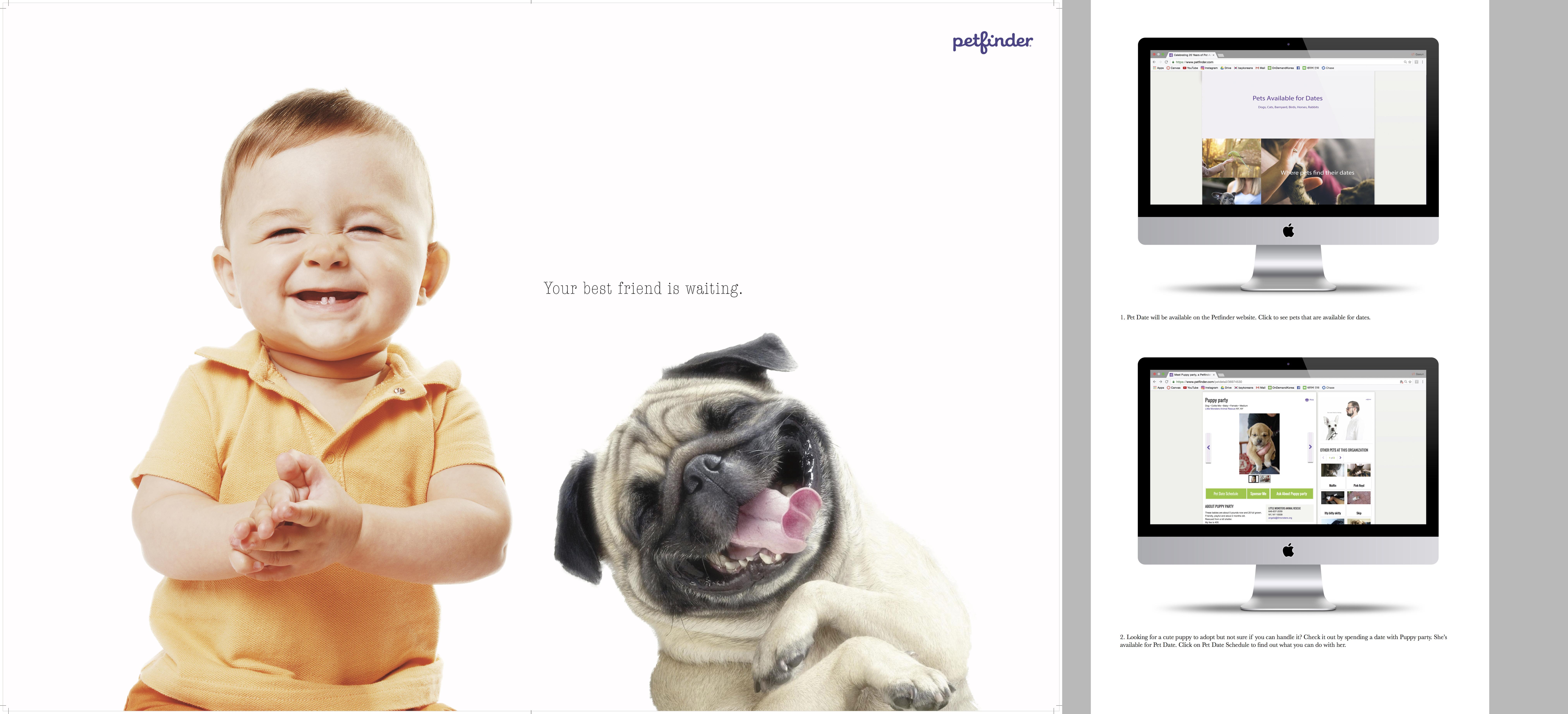 Petfinder.com  Campaign + App & Web